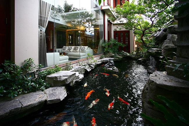 Hồ cá koi - công trình mơ ước của bất kỳ ngôi nhà Việt
