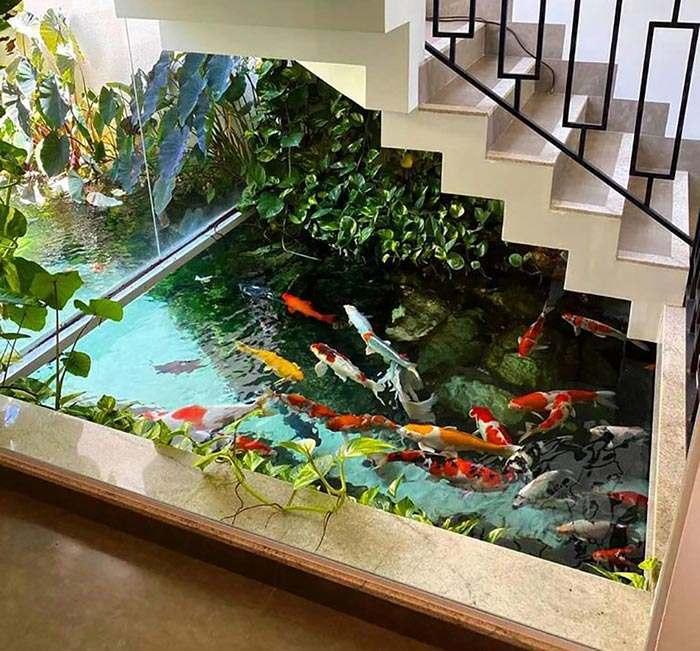 Bể cá koi đẹp trong nhà tạo nét đẹp riêng cho khu vực cầu thang