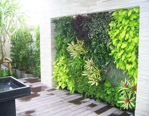 Vườn tường cây xanh đứng tạo sự nổi bật riêng cho khung cảnh xung quanh