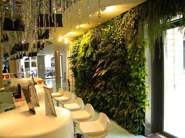 Một số không gian, vị trí thường được thiết kế vườn trên tường