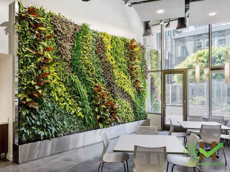Mảng tường xanh tạo nên một bức tranh bình yên và tĩnh lặng