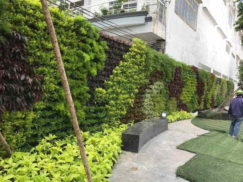 Quá trình thi công vườn tường đứng của Thắng Dung